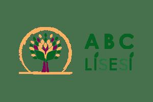 ABC Lisesi