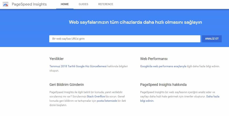 PageSpeed Insights Analiz Et