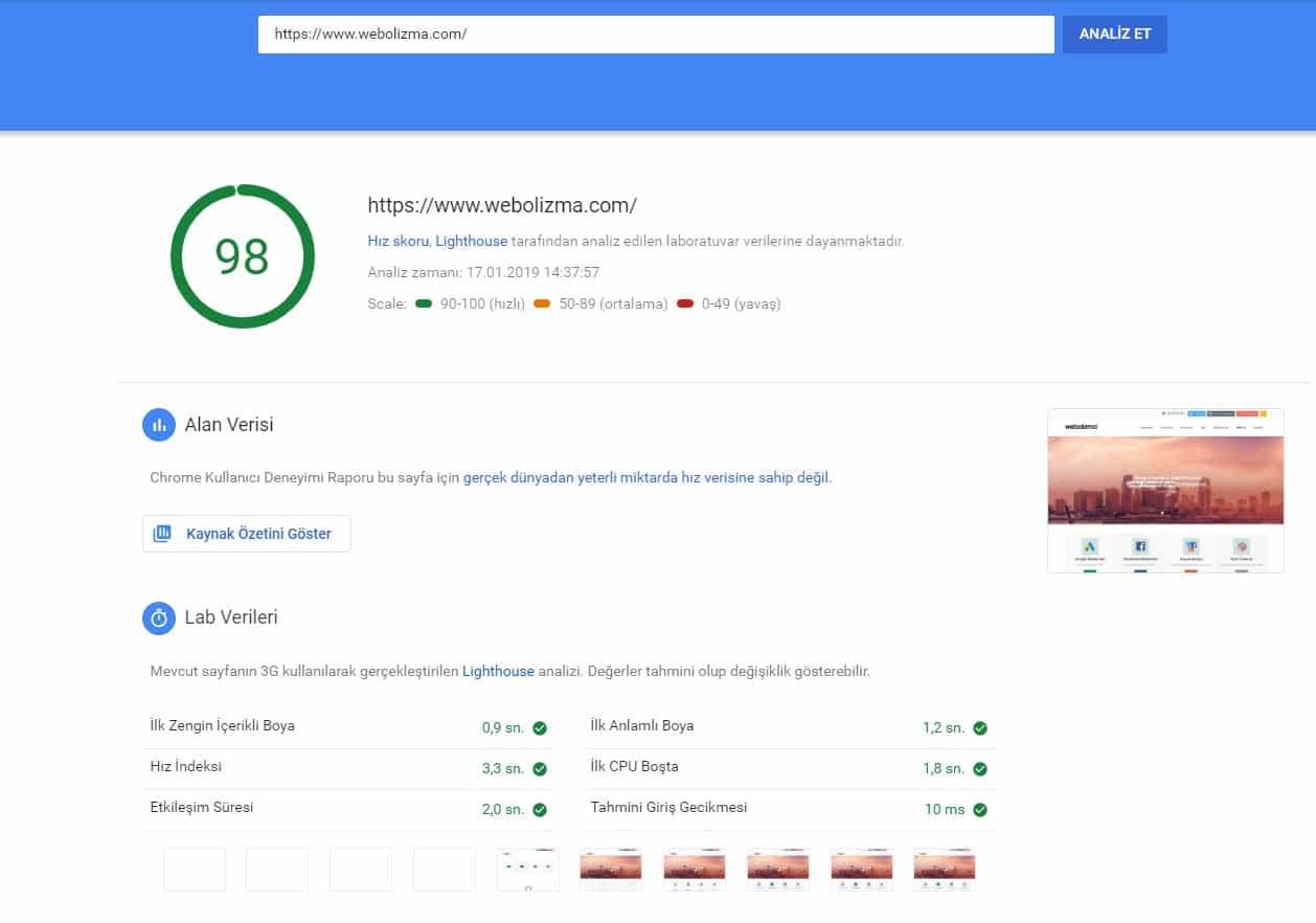 PageSpeed Insights Deneme Webolizma