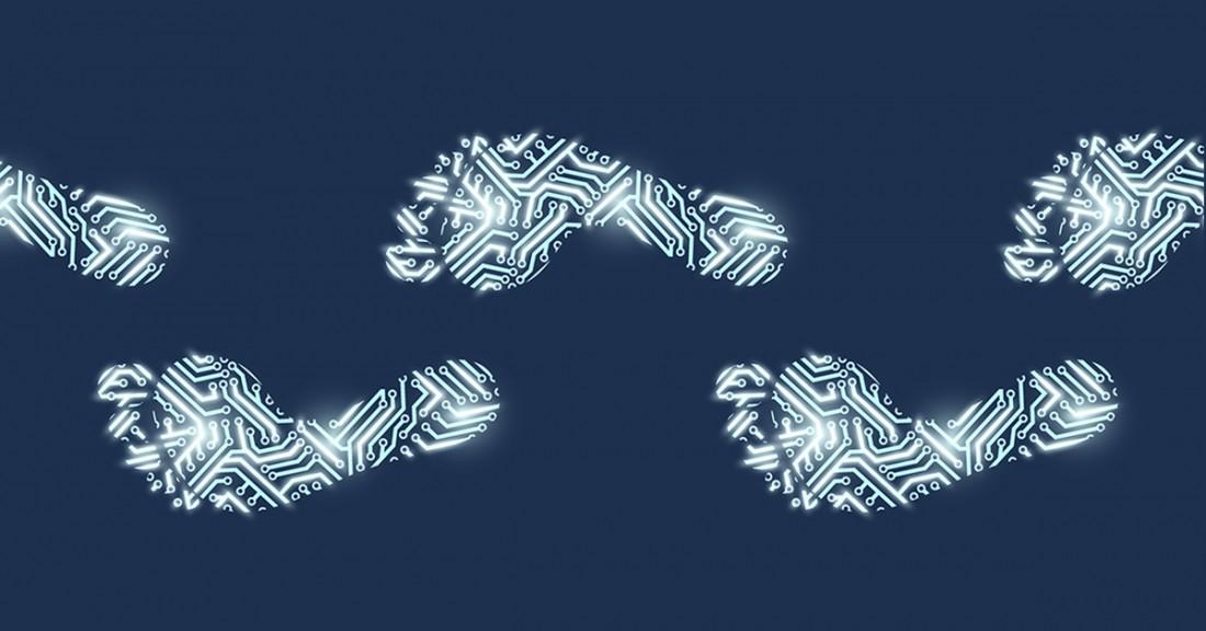 Digital_Footprint-(2)